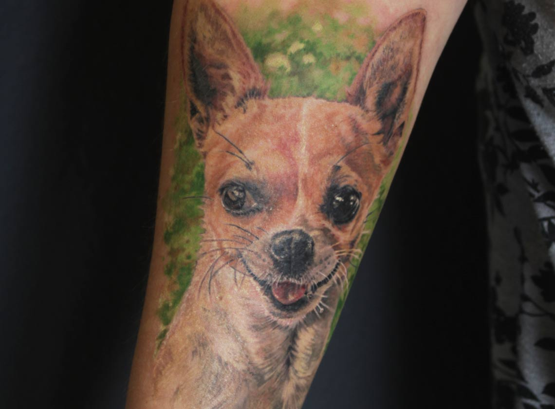 farbiges Hundeportrait Chihuaha Tattoo